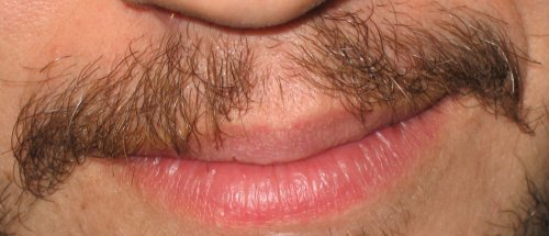 Mustachioed Hombre Numero Uno